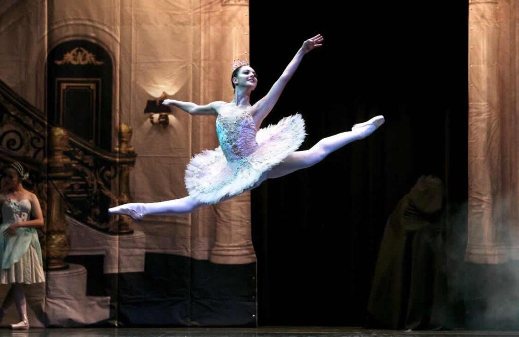 Escola do Teatro Bolshoi